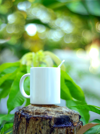 Coffee cup in garden