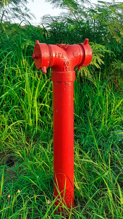 Fire water pipes are in the forest Stock Photo