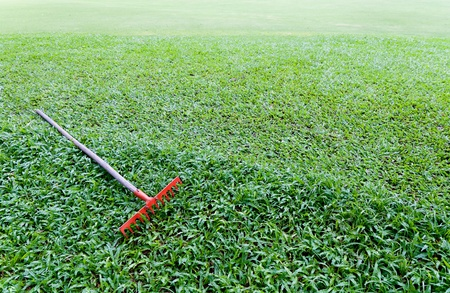 red rake on grass photo