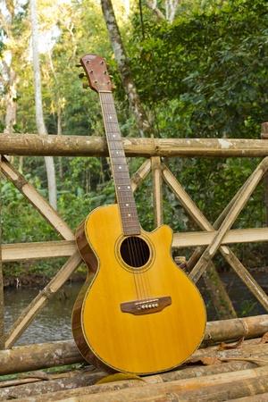 Guitar with Travel