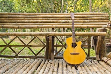 Guitar & Branch