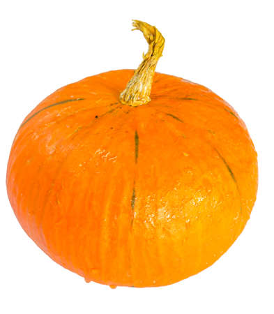 Pumpkins on White Background Stock Photo