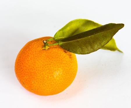 One Orange on White Background