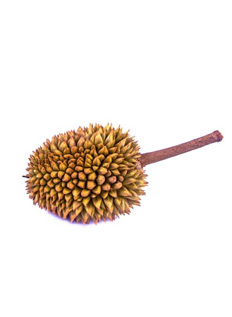 Mini Durian fruit