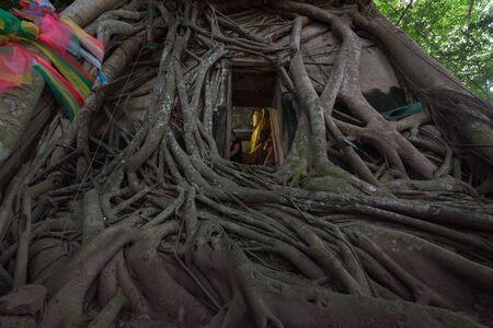 Image of Buddha at Wat Bangkung, Ampawa, Samutsongkram, Thailand.