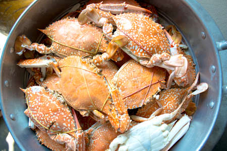 blue swimmer crab: Stack of steamed Sand crab Stock Photo