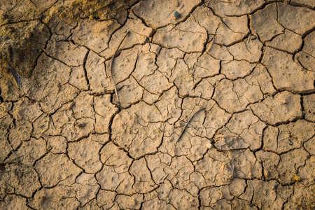 barrenness: cracked soil