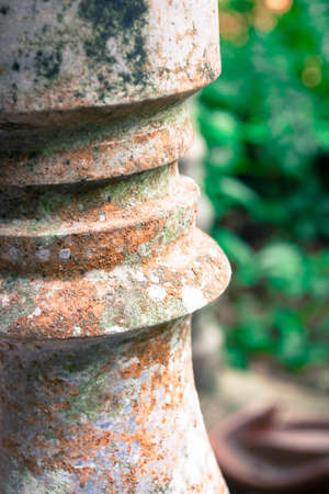 Green lichen on Classical banister fragment photo