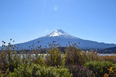 fuji mountain: Fuji mountain in Japan