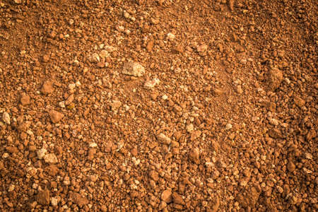 red soil: laterite soil