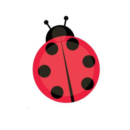 Ladybug Stock Vector - 47100874