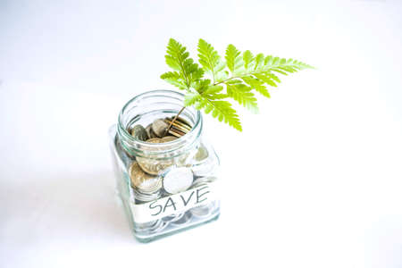 The Concept of Saving Money and Invest Growing Business