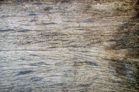 wood background with white pattern