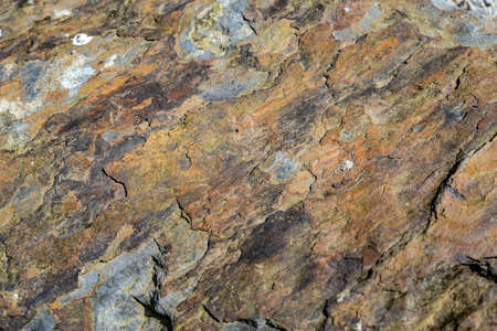 The surface of rock texture background.