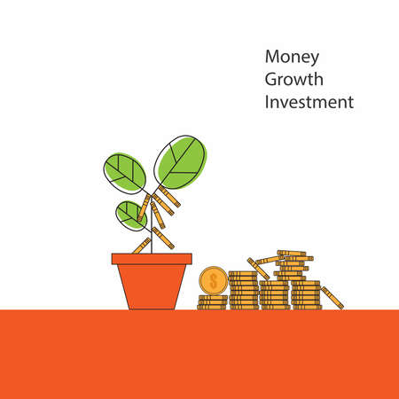 Money tree growth ,  Business investment concept