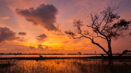 Kukud Lagoon in Thailand photo