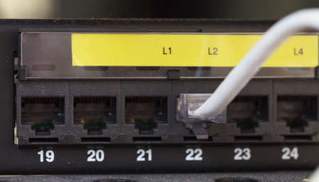 Server Internet Connected with LAN cables  photo