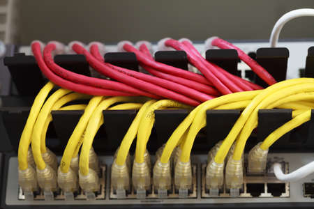 Large network hub connected Internet with LAN cables  photo