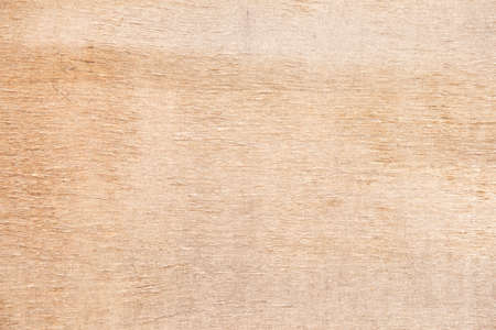 Close-up bright wood texture. High resolution picture of blank space