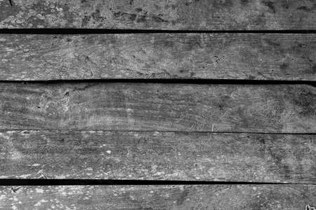 grung: black and white grung Wood Texture