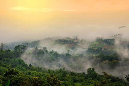 scenary: beautiful scenary in  Thailand over the valley of mountain at sun rising giving a beautiful color on the mist in the field Stock Photo