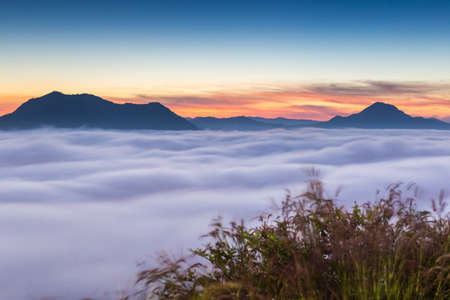 Beautiful sun rise at pho tog mountain and the mist in thailand