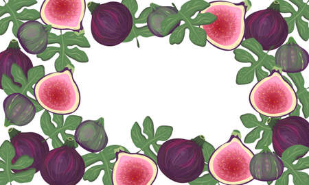 Collage of whole figs and halves and leaves on a white background in the shape of a rectangular frame with space for your text. Banner, postcard, advertisement.