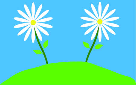 white daisies on blue background Stock Vector - 15274300