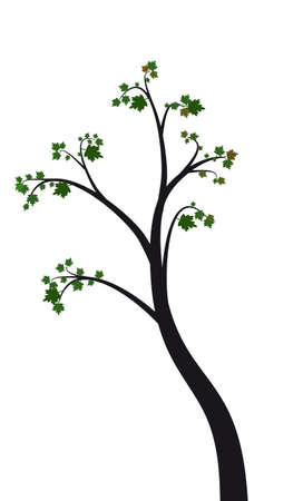 tree with leaves on a white background  Vector