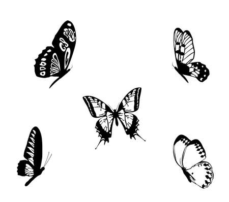 Set black white butterflies of a tattoo Stock Vector - 15787838
