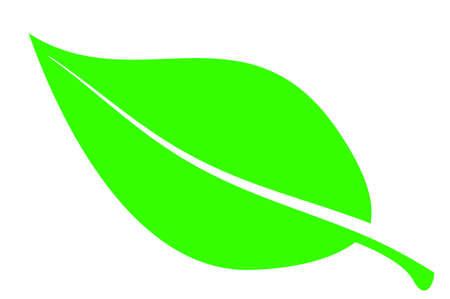 在白色背景簡單的綠葉 向量圖像