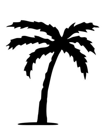 Detailed palm tree isolated on white background Vector