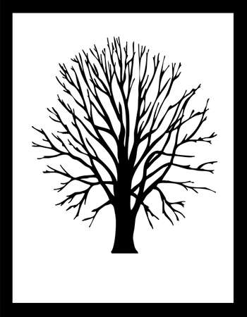vectored:  black vector tree silhouette isolated on white