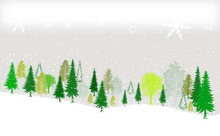 arbre     ? � feuillage persistant: Vert et blanc d'hiver fond for�t grunge design Illustration