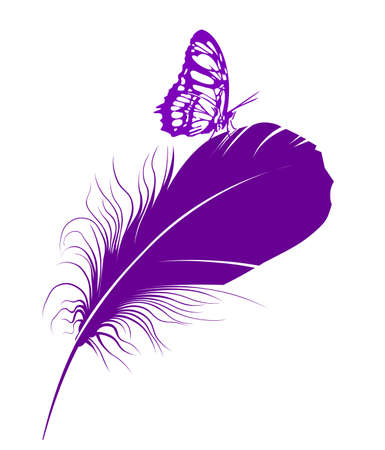 purple butterfly: purple butterfly on a feather