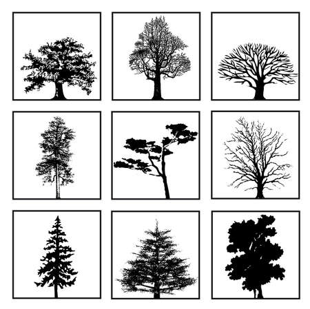 silouette: Set of nine trees on a white background