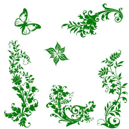 leaf curl: Set of floral elements for design  Illustration