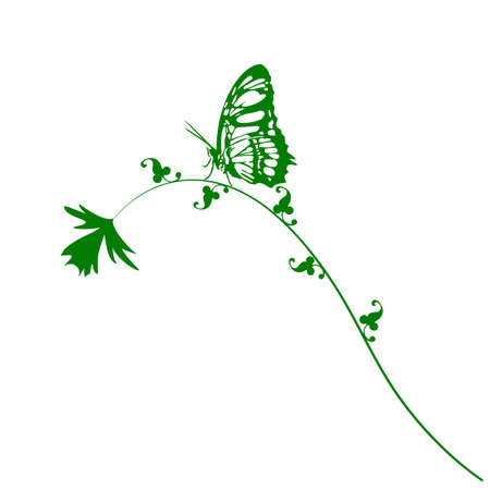 butterfly and flower on white background Vector