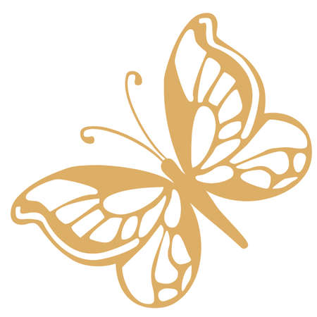 Illustration - golden butterfly on a white background  Vector