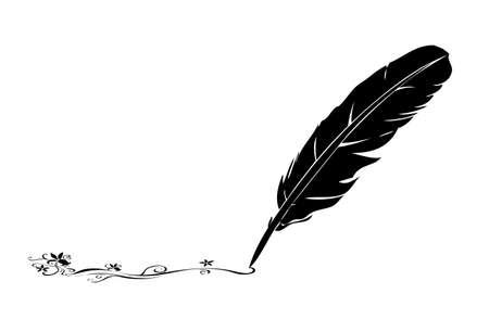 黑色和白色的羽毛和蓬勃發展