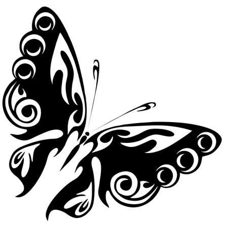 蝴蝶在白色背景上