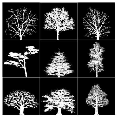 siluetas: Set of nine trees on a black background