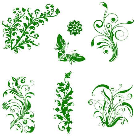 Set of floral elements for design  Vector