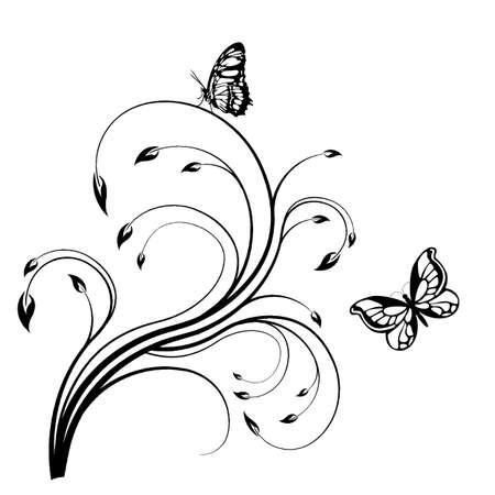 farfalla nera: Illustrazione - farfalla nera su uno sfondo bianco