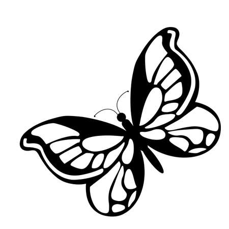 butterflies abstract: illustration - black butterfly on a white background
