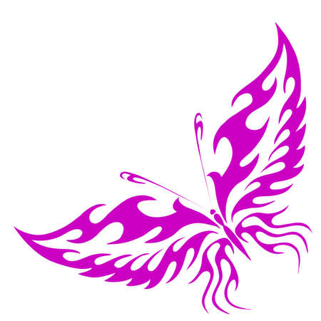 illustration -  butterfly on a white background  Vector