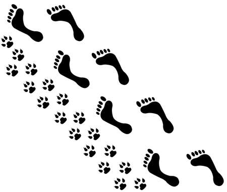 foot prints:  People and pet footsteps and foot with pain
