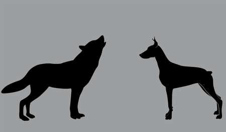 alaskabo:  a dog and a wolf on a gray background Illustration
