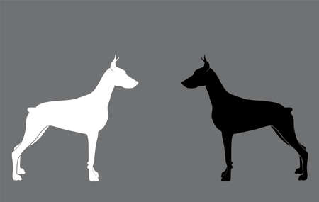 two dogs on a gray background Vector