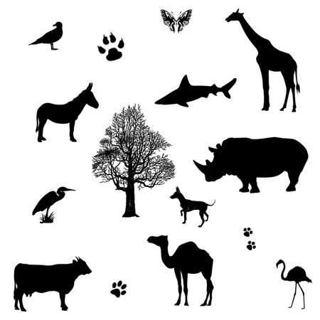 Set of animals silhouette  Vector